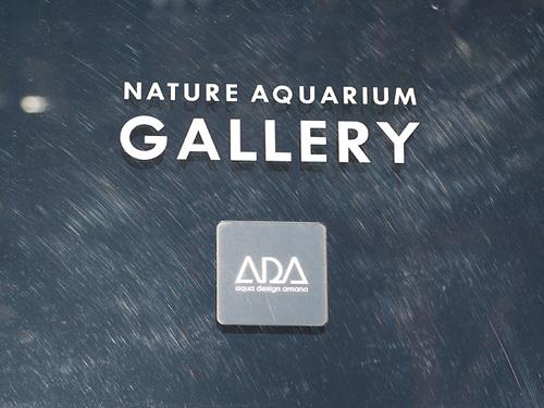 Ada06013